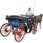 carriage in spanish