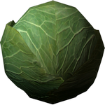 cabbage in spanish