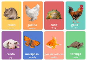 learn animals in Spanish