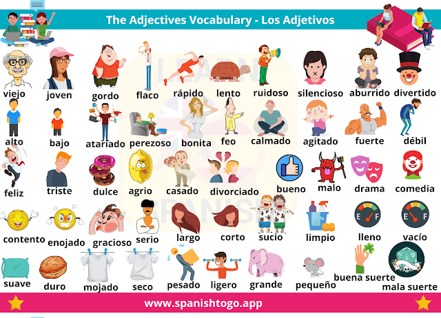 Basic Spanish Words and Phrases with Audio